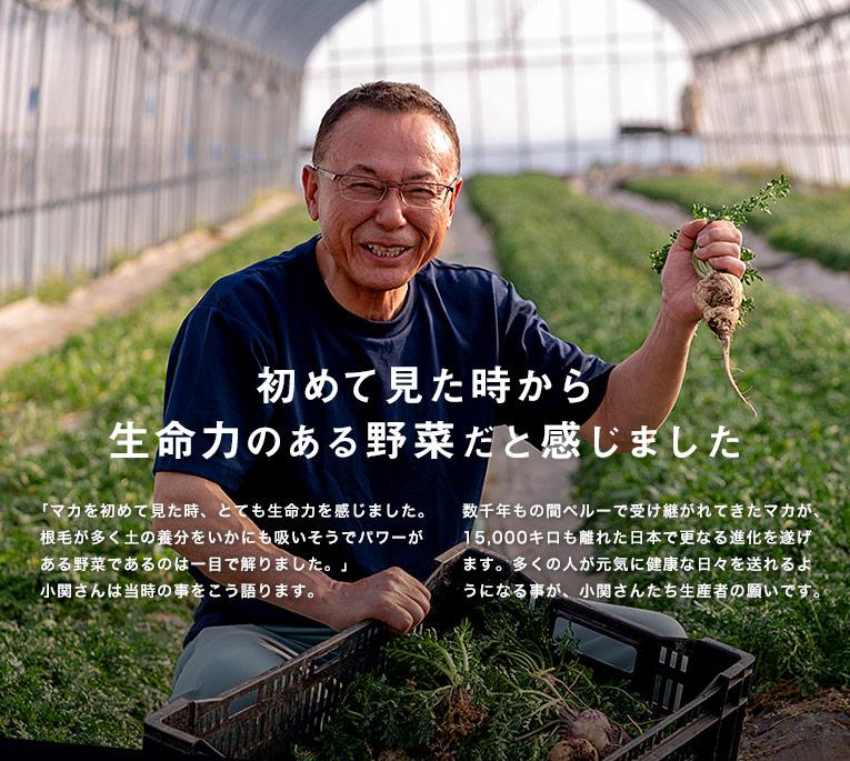 15年の歳月を経て、やっと栽培に成功した国産マカ  『収穫したマカを食したときはとんでもない生命力・パワーを持った植物だと感じ、今までの苦労を忘れるほど、強烈なインパクトがありました。』 大久保さんは嬉しそうに語ります。  数千年もの間、ペルーで受け継がれてきたマカが、日本で栽培されるようになったのは、とても感動的な事だと思います。多くの人が元気に、健康で活力ある日々を送れる事が、大久保さんの願いです。