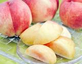 『大藤の浅間白桃』 山梨県産 特秀品 約1.5kg(5〜8玉)