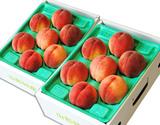 山形県のフルーツのプロ・伊藤さんが選ぶ「旬の桃」約2kg(7〜10玉)×2箱