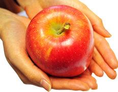 市場人も知らなかった極上のリンゴ『安祈世(あきよ)』