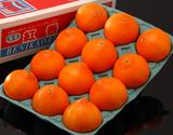 『紅香(べにかおり)』 長崎県産 大玉約3kg(8〜12玉) ※常温