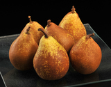 『ゼネラル・レクラーク』 岩手県産 洋梨 約5kg(14〜20玉入) ※冷蔵