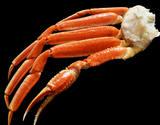 『巨大ボイルズワイ蟹』 ロシア産 6Lサイズ 約2kg 4肩 ※冷凍