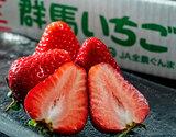 『おぜあかりん』 群馬県産 JA利根沼田 約500g(12〜15粒)化粧箱 ※冷蔵