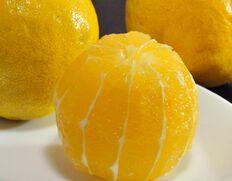 豊洲独占!そのまま食べられる甘イレモン「レモネード」