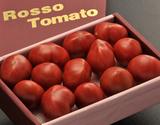 形状不揃い『ロッソトマト』 愛知県産 2S〜2Lサイズ 約1.2kg