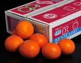 『紅香(べにかおり)』 長崎県産 小玉約3kg(15〜21玉) ※常温