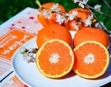 『ゆめほっぺ』山口県産柑橘 M〜3Lサイズ 約2.5kg