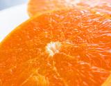 『シュガースポット清見』 愛媛県三崎産 M〜4Lサイズ 約5kg