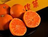 『俊菓みかん(ゆら早生)』 和歌山県産 2S〜Sサイズ 約2.5kg
