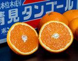 『清見』愛媛県三崎産 優〜秀品 2〜4Lサイズ 約5kg