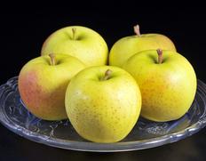 青森秘蔵の黄色いりんご アンビシャス