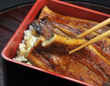 『五匠鰻』鹿児島産 100g〜120g×5尾  ※冷凍
