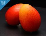 《父の日ギフト》宮崎県産『完熟マンゴー』3L(450〜509g)×2玉 化粧箱