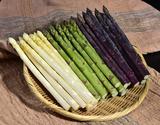 『アスパラガス 緑・白・紫 3色セット』福島県会津産(緑・白:Lサイズ/紫:M〜3Lサイズ) 各約200g ※冷蔵