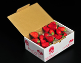 『菅谷利男さんのいちご』茨城県産 お試し不揃い 1箱約500g(約250g×2P) ※冷蔵