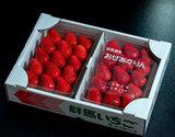 『おぜあかりん』 群馬県産 JA利根沼田 約400g(8〜15粒)×2パック ※冷蔵