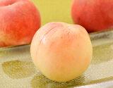 『伊達の桃』 福島県産 特秀品 約1.5kg(5〜10玉)×2箱