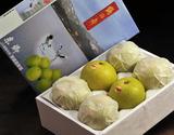 鳥取産二十世紀梨 東郷選果場の「鶴の舞」約2kg(5〜6玉 ) 化粧箱