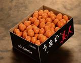 『うまか美人』 佐賀県産 秀品 S〜2S 約5kg(60〜90玉程度)