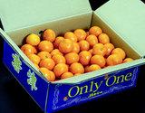 JAからつ「Only One(オンリーワン)」(うわばの夢)佐賀県産みかん 秀品 S〜2S 約5kg