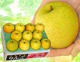 『王林』 青森県産 特A品 約3kg(9〜11玉)