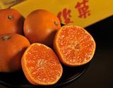 橋爪流栽培みかん『俊菓(しゅんか)』 和歌山県産 2S〜Mサイズ 約5kg