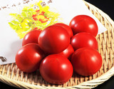 『塩トマト』熊本県八代産 8〜16玉 約700g