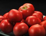 「スイートピュア」静岡県産フルーツトマト 3S〜2L 約900g(7〜23玉)