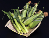 小林さんのトウモロコシ『きみひめ親子セット』 山梨県産 4本+ベビーコーン7〜9本 約2kg ※冷蔵