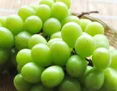 皮ごと食べられる種無しブドウ「シャインマスカット」