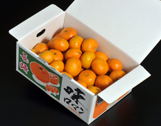 店長イチオシのみかん「味ロマン」 ⇒ 送料無料・1,999円