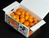 『味ロマン』 長崎県産 2S〜Mサイズ 約2.5kg