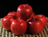 百年の樹齢を重ねる『昔ながらの紅玉』青森県産 2.5kg(12〜20玉)