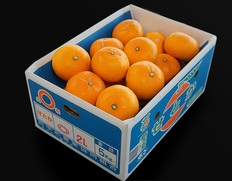最高峰柑橘「せとか」が訳あり特価〜!