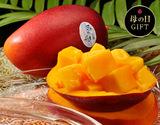 《母の日ギフト》宮崎産完熟マンゴー『時の雫』 2Lサイズ 350g〜449g×2玉 メッセージカード・化粧箱入