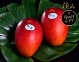 《母の日ギフト》宮崎産完熟マンゴー『時の雫《極み》』 2Lサイズ 350g〜449g×2玉 メッセージカード・化粧箱入
