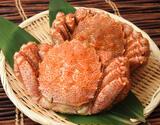 『訳アリ毛蟹』 堅蟹 北海道産 2杯 合計1kg ※冷凍