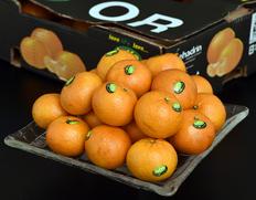 桃やパイナップルの香り『オアオレンジ』