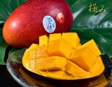 宮崎産完熟マンゴー『時の雫《極み》』 3Lサイズ 450g〜509g×2玉 化粧箱入