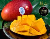 《母の日特選》宮崎産完熟マンゴー『時の雫《極み》』 3Lサイズ 450g〜509g×2玉 メッセージカード・化粧箱入
