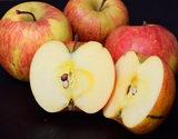 岩木山りんご生産出荷組合の『訳アリ葉とらずサンふじ』 青森県産 約3kg(8〜13玉)