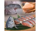 『傷負い時鮭』 北海道産 1尾 約1.5kg ※冷凍