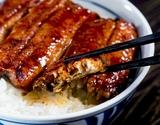 『炭火焼き鰻』 宮崎県産 八本木樽醤油タレ 100g×10串 ※冷凍