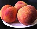 高嶋さんグループの『紅い黄桃(無袋)』約2kg(5〜10玉)×2箱 山形県産