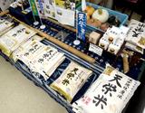 『特別栽培米天栄米』 福島県産 10kg(5kg×2袋) 白米 【平成29年度産】