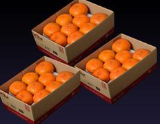 1箱当たり999円!おけさ柿が2kg×3箱 ⇒ 送料無料2,997円