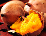 『安納紅』 鹿児島県種子島産 訳アリ小玉 約1.5kg