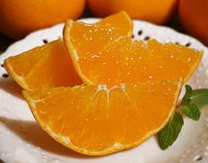 貴重な柑橘『甘平』が訳あり特価!