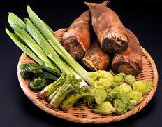 貴重な天然山菜を築地の仲卸が選り抜きお届けします。